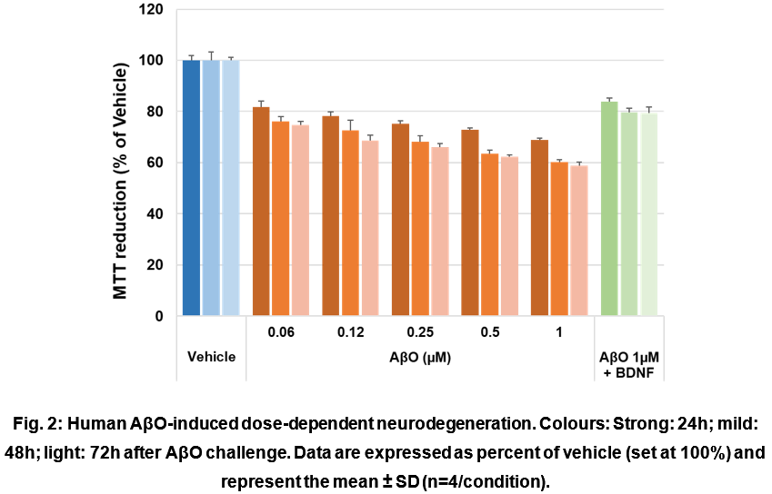 Human AβO-induced dose-dependent neurodegeneration. Colours: Strong: 24h; mild: 48h; light: 72h after AβO challenge. Data are expressed as percent of vehicle