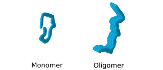 oligomers formation - conformation change
