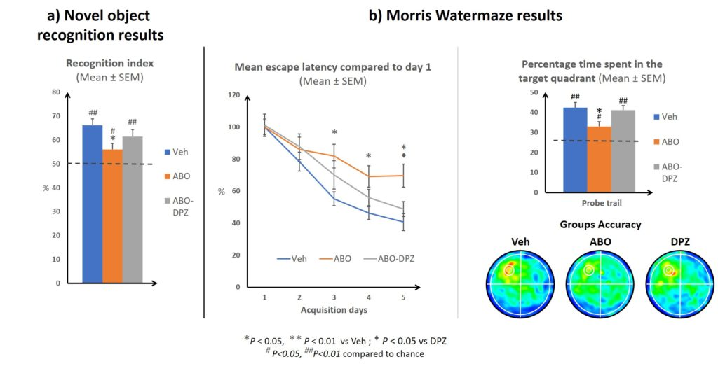 Behavioural results Donepezil inof Model Beta Amyloid Oligomers - in vivo - watermaze and novel object recognition