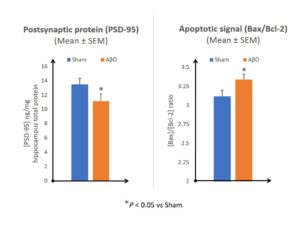 Figure 1: Graphical representation of PSD-95 expression and Bax/Bcl-2 ratio in the hippocampus, 18 days after AβO administration.